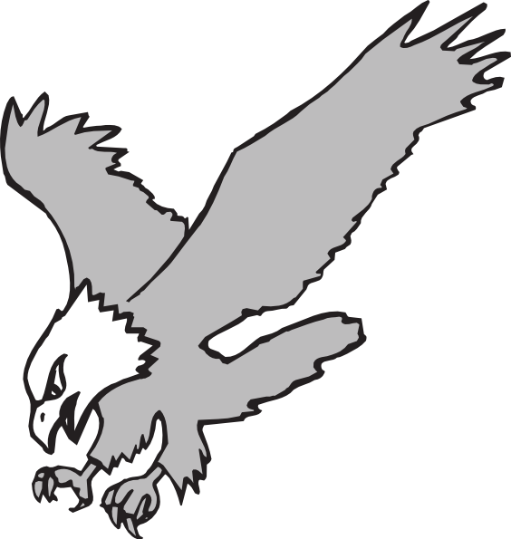 Gray And White Eagles png