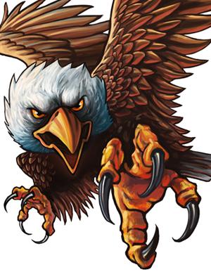 Bald Eagle Free Idea png