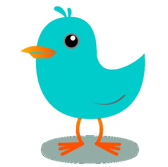 Bird Png Bird Images 2