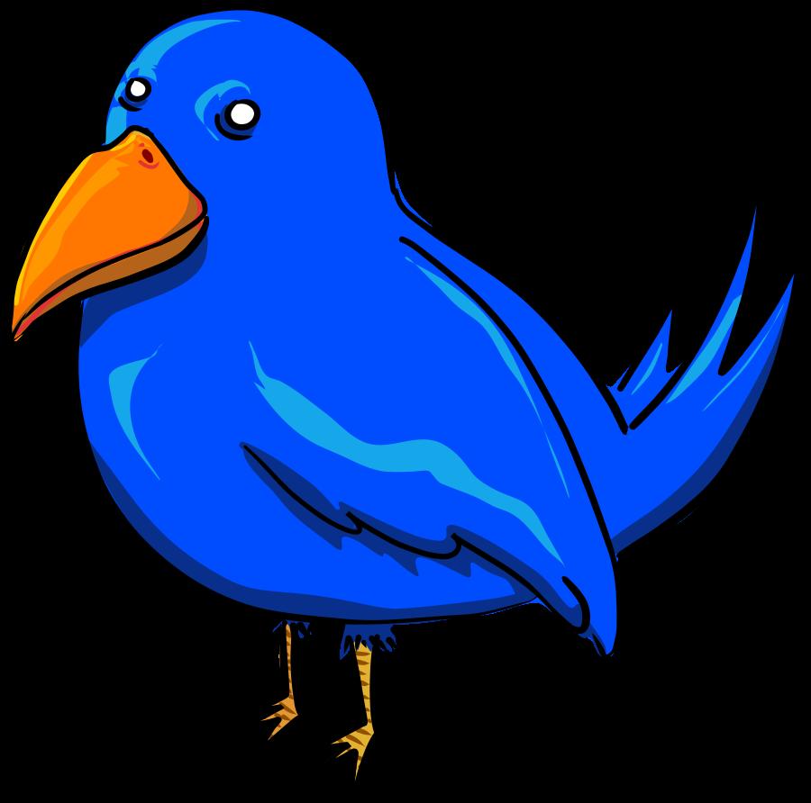 Bird Png Bird Images