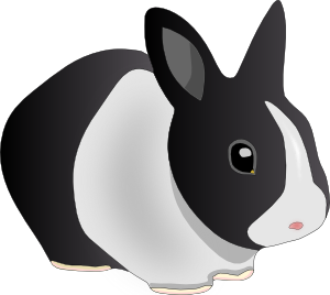 Bunny Free Rabbits Png Free Png Graphics Images And Photos