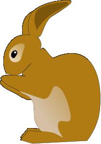 Bunny Rabbit Png At Vector Png