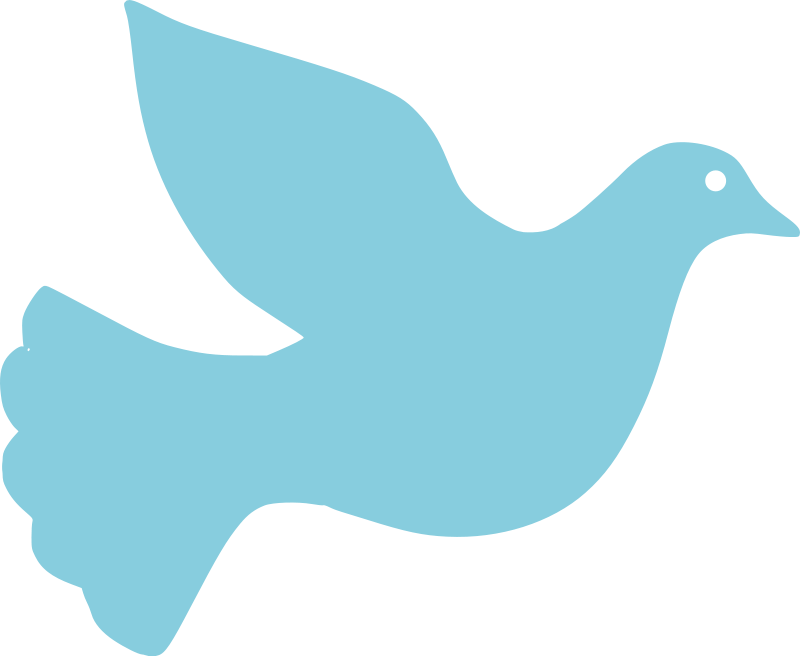 Dove Creation Png