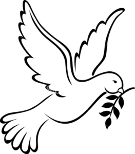 Dove Png Transparent No Background Free 2 1