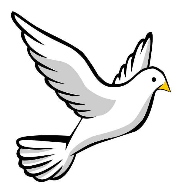 Dove Png Transparent No Background Free
