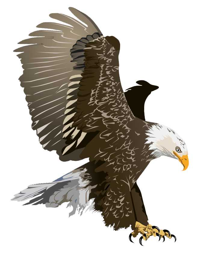 Eagle Free To Use Png