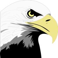 Eagle Head Free Idea png