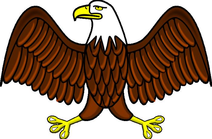 Eagle Free Design png