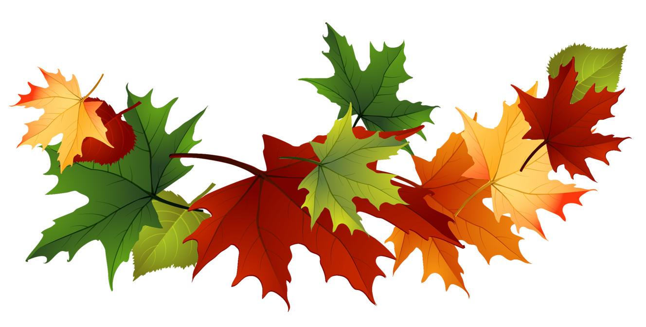 Fall Leaves Fall Png Autumn Png 2