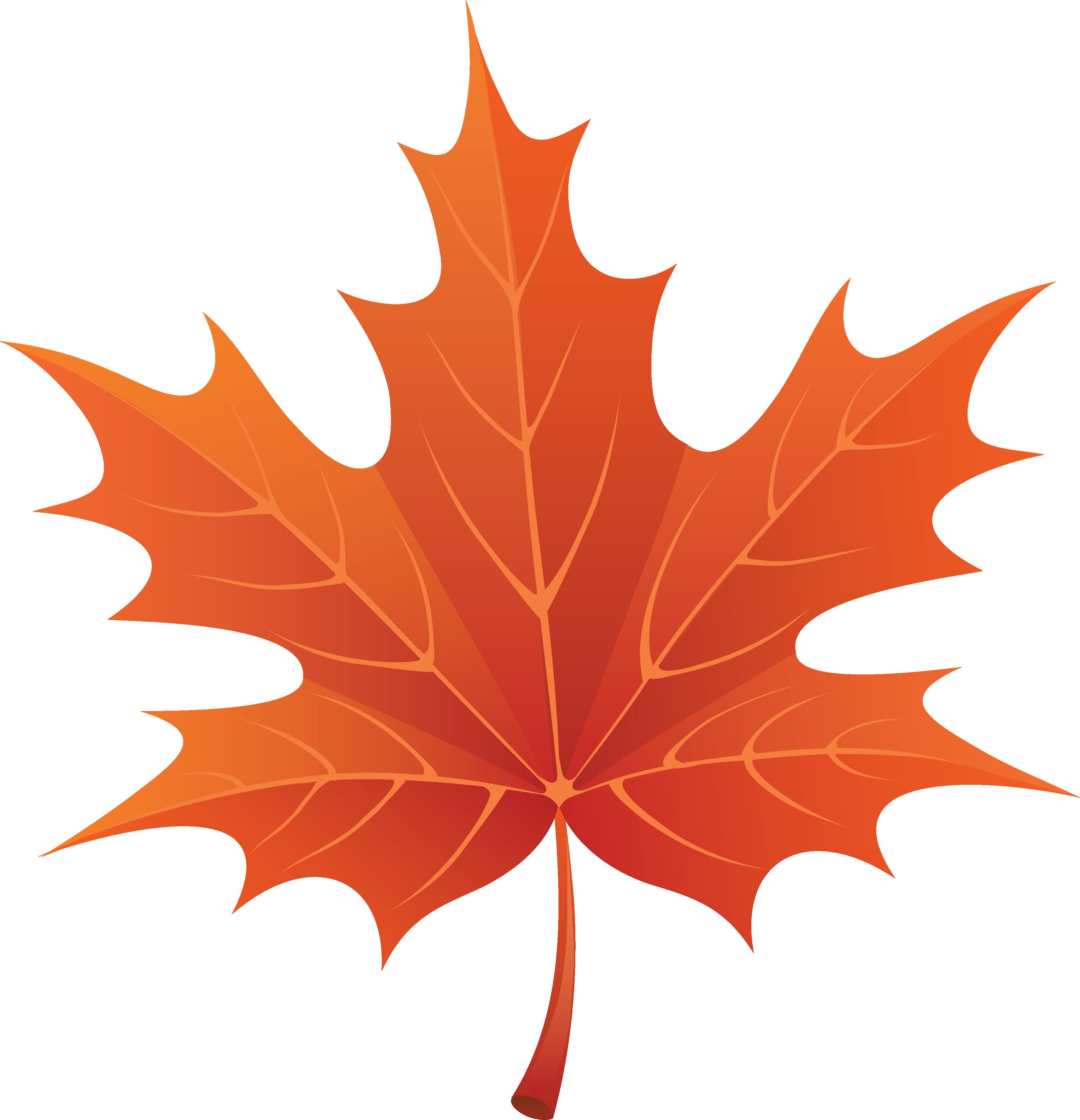 Fall Leaves Pumpkin Leaf Png Free Png Images 2