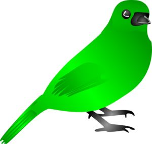 Flying Bird Png Png