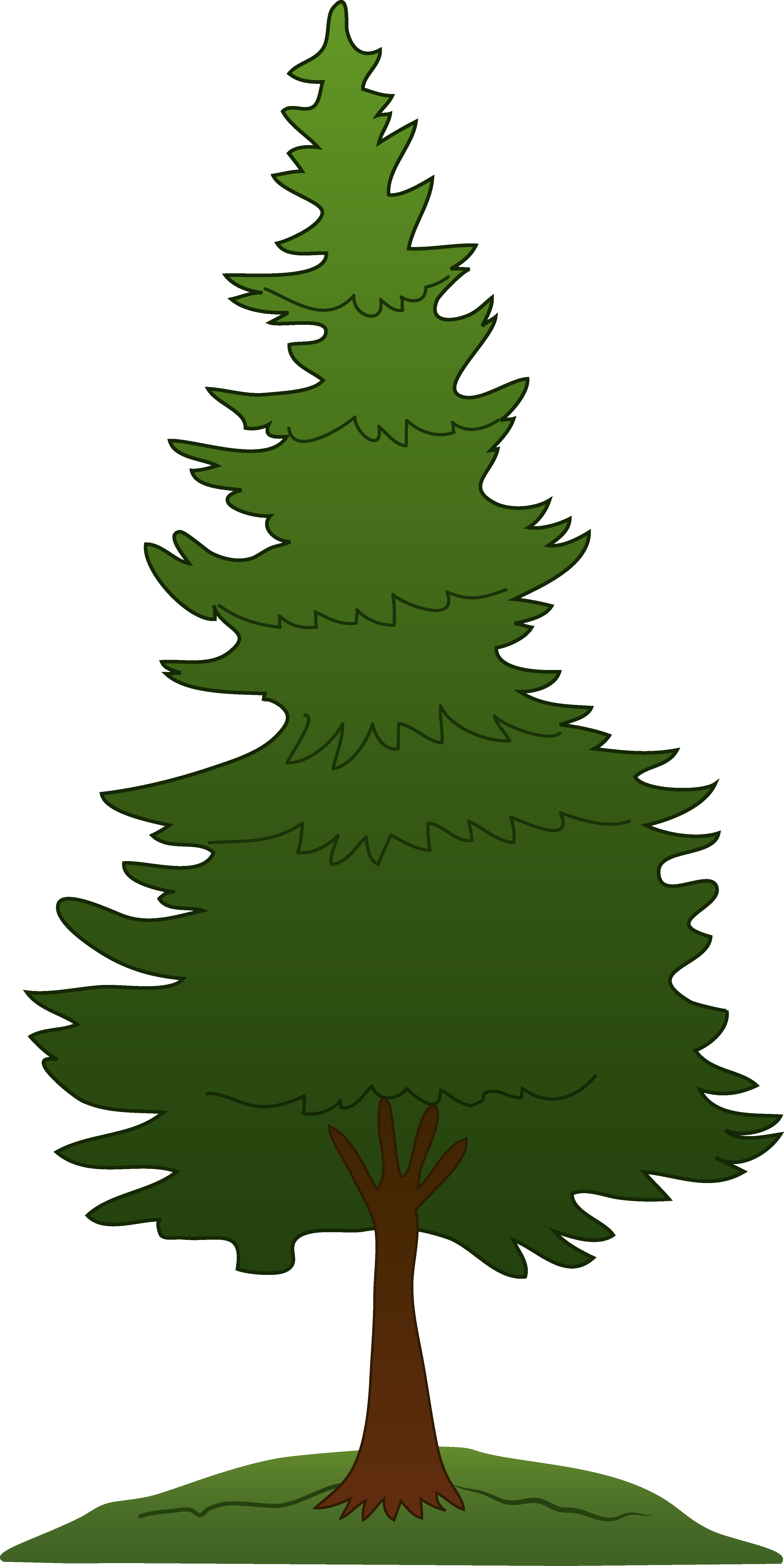 Forest Trees Png Free Images