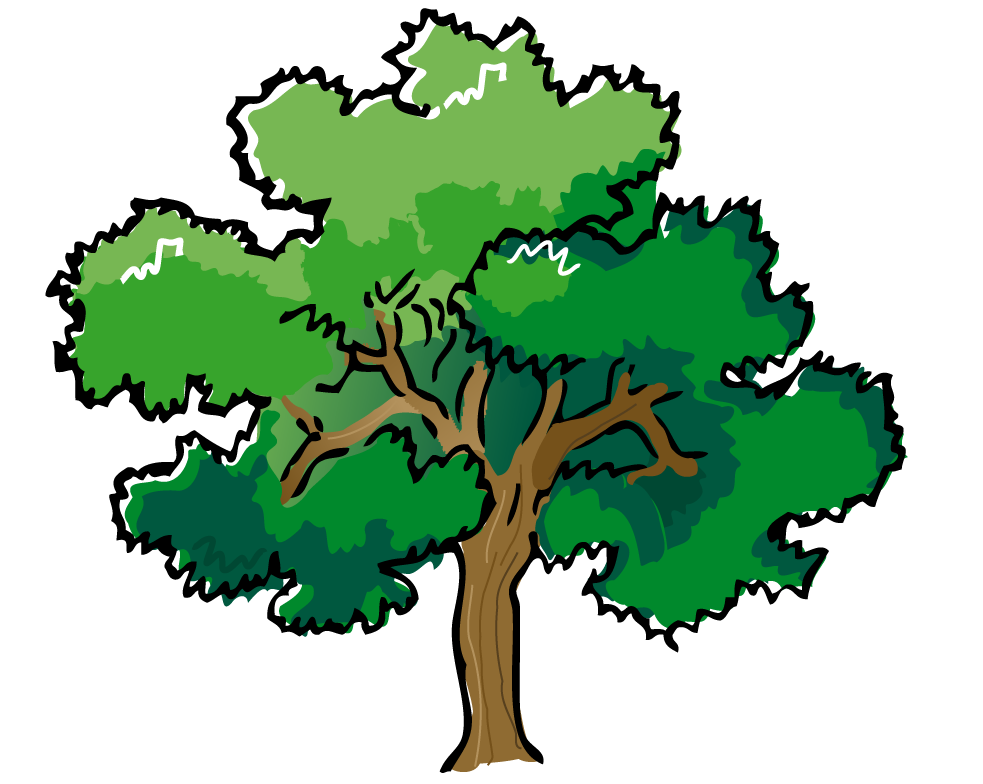 Forest Trees Png Free Png Images