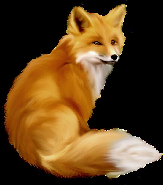 Fox PNG