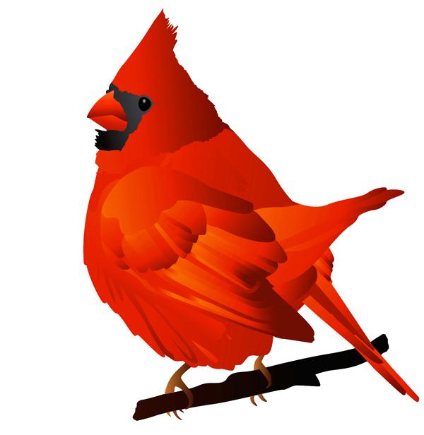 Free Cardinal Png Png