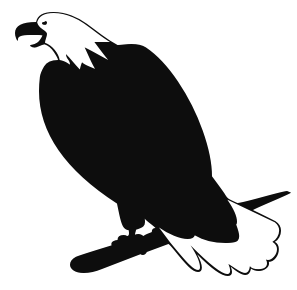 Eagle Black And White Free Photo png