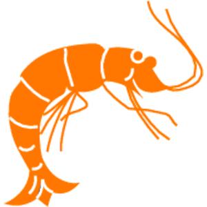Shrimp PNG