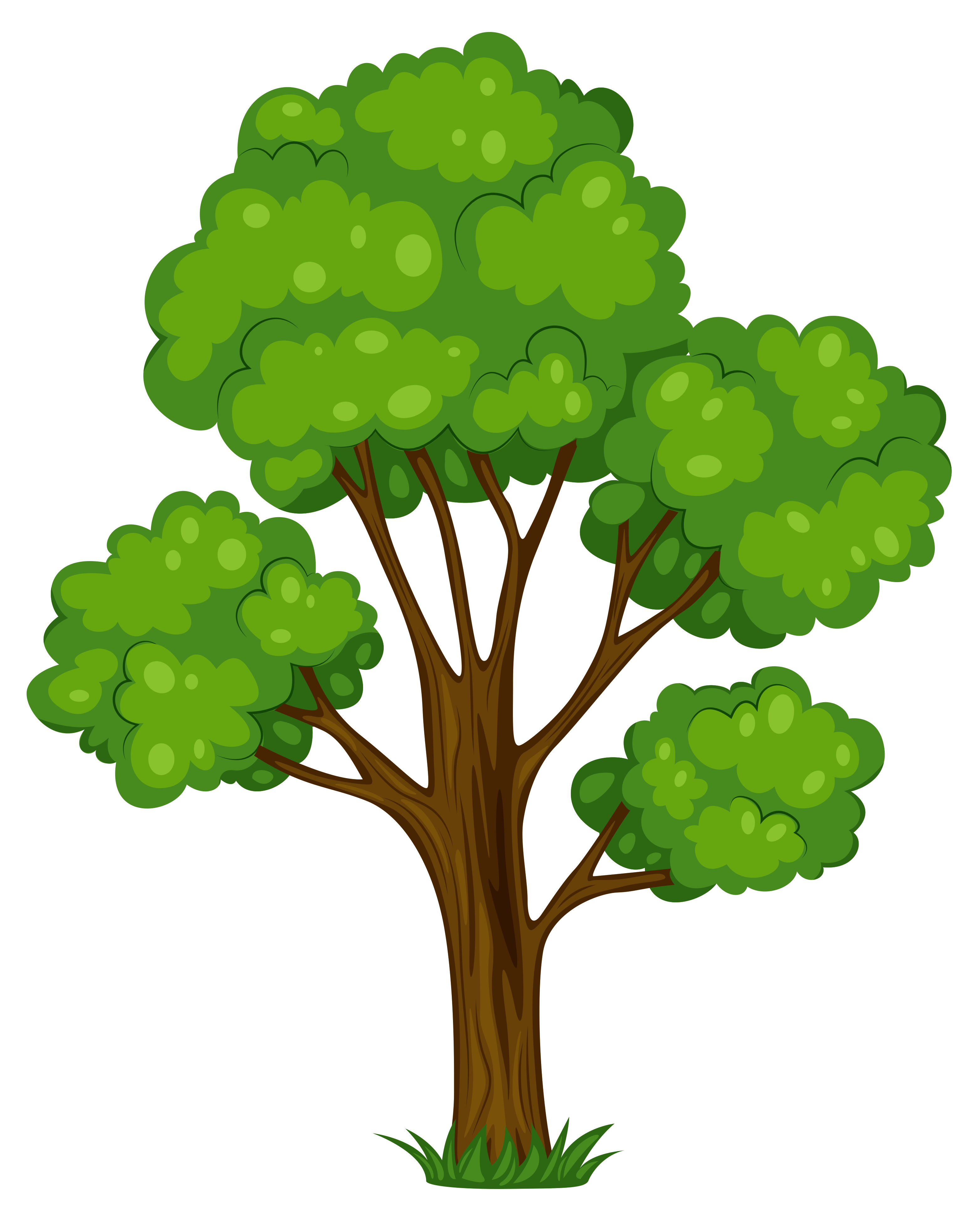 Free Trees Png Pictures 2
