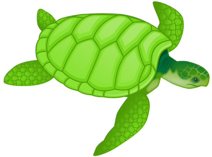 Free Turtle Png And Animations
