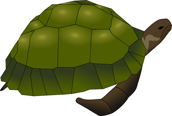Free Turtle Png Png