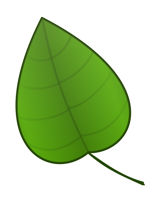 Green Leaves Images Free Png