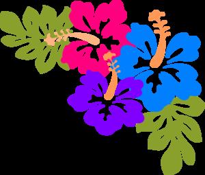 Hawaiian PNG