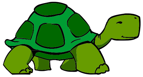 Hawaiian Sea Turtle Png Free Png Images 2 1