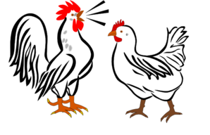 Hen And Rooster Png Free Png Images