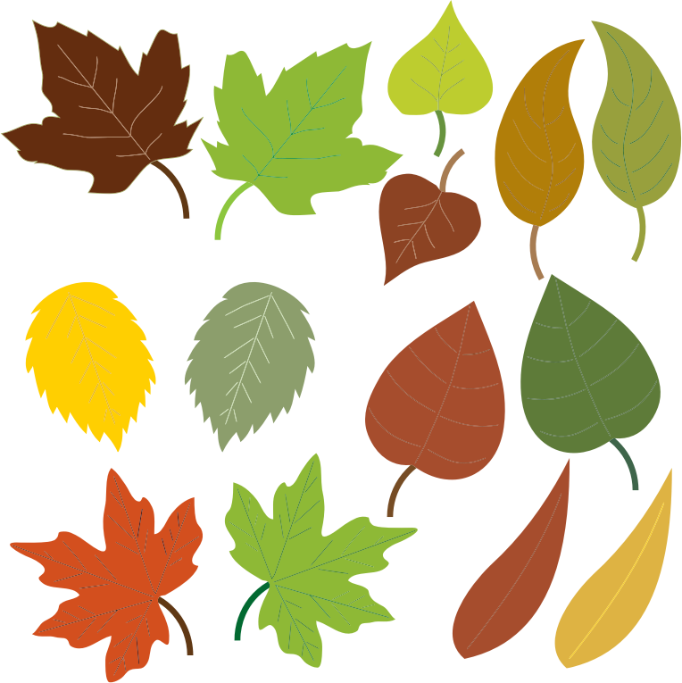 Leaves Free To Use Png