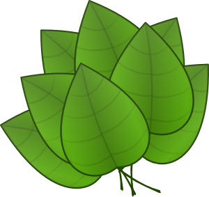 Leaves Leaf Png Images Free Png