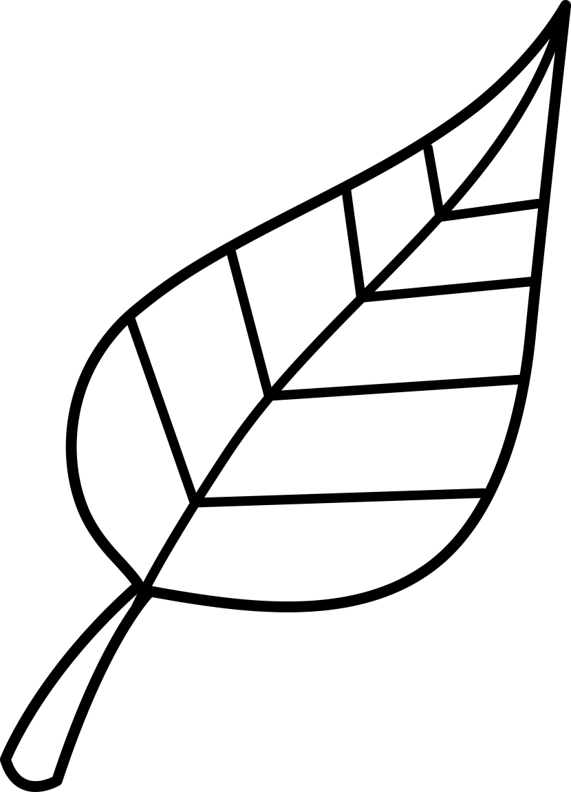 Leaves Png Free Download Png On