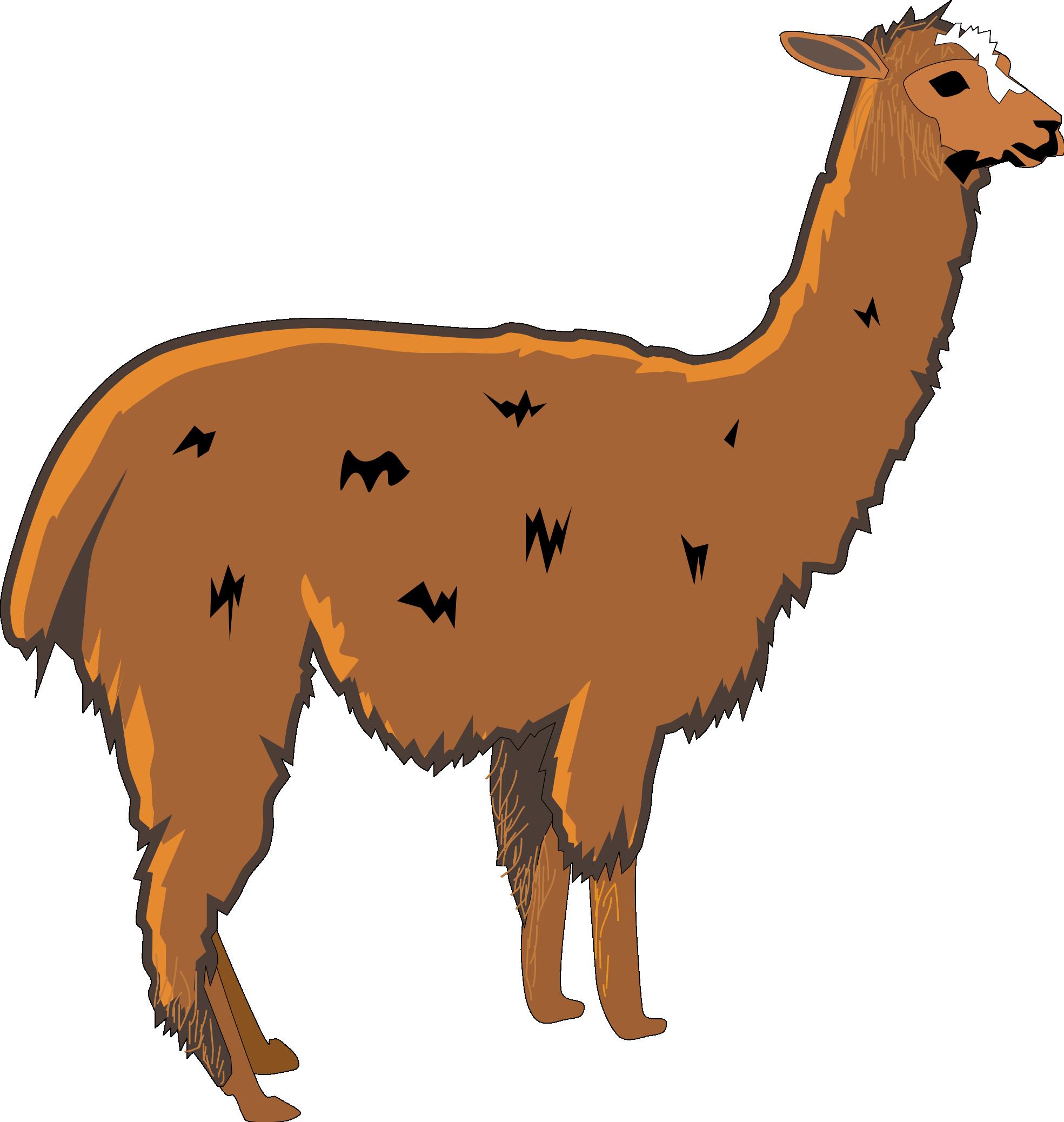 Llama PNG