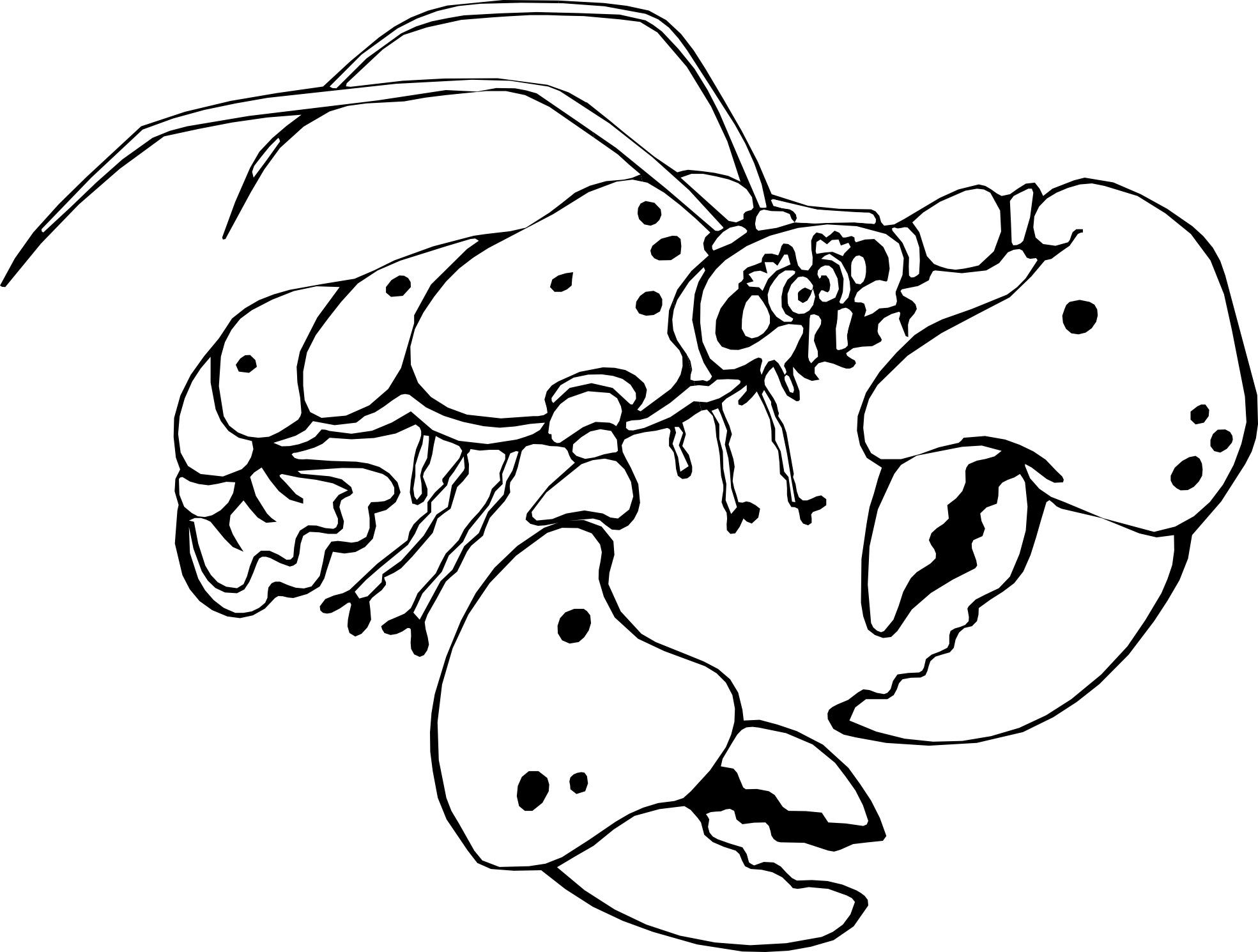 Lobster Png Of A Black And White Crayfish Veran