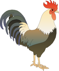 Morning Rooster Png Kid