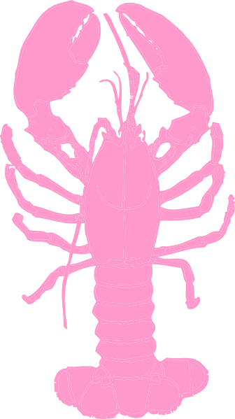 Pink Lobster Png At Clker Vector Png