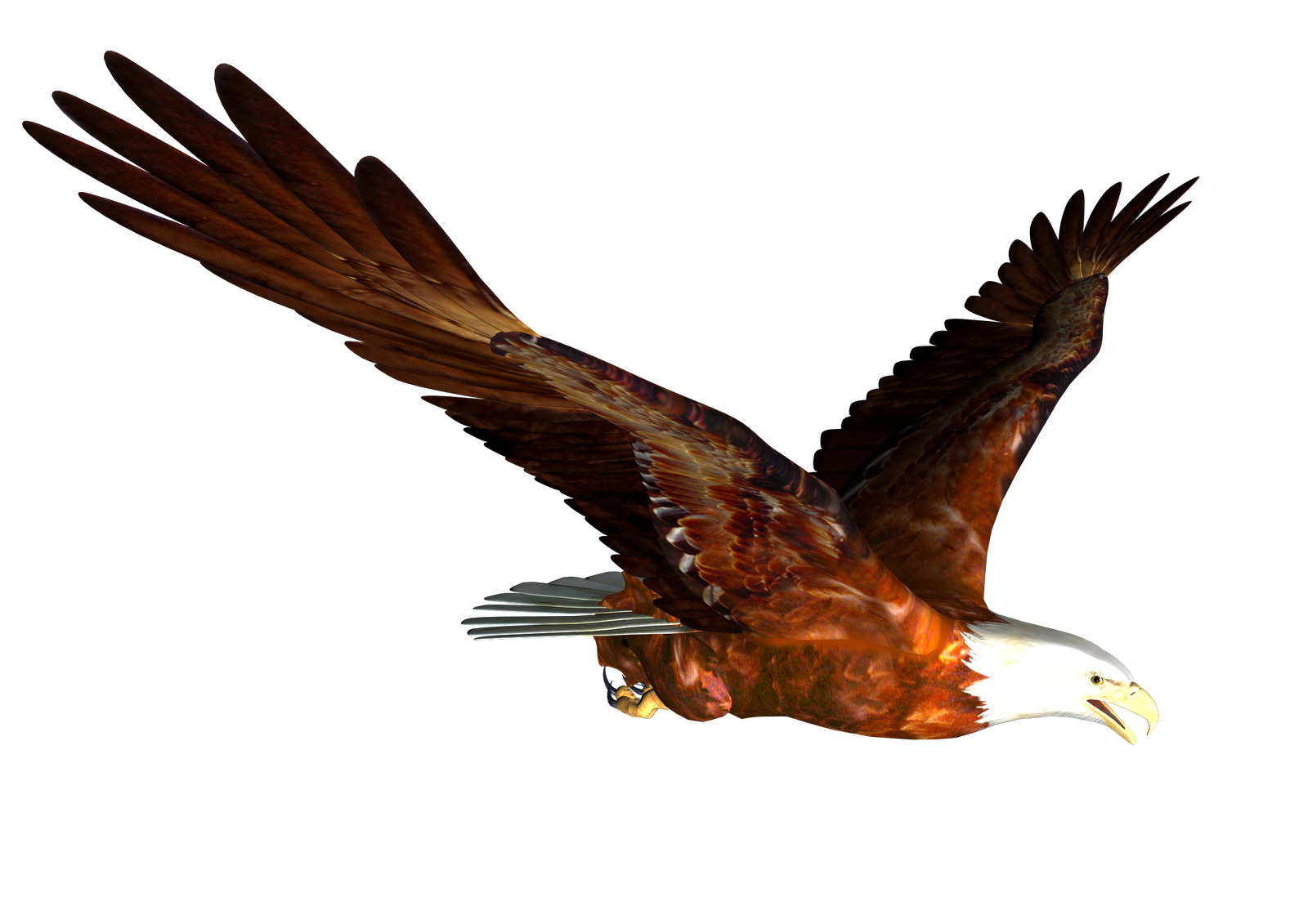 Eagle Free Download png