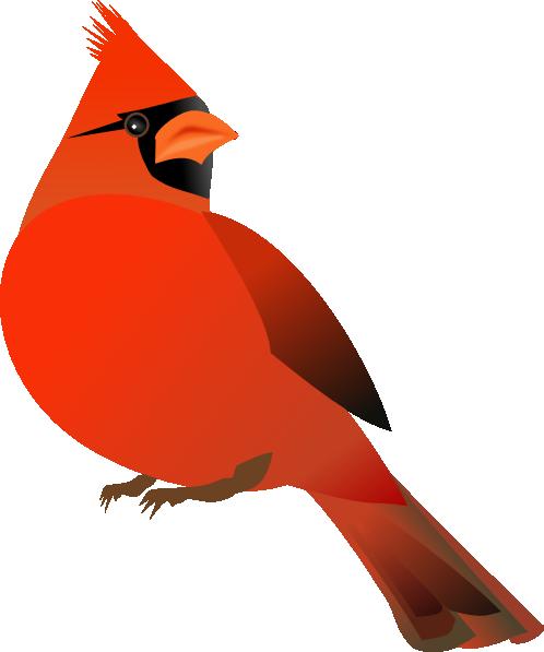 Red Cardinal Png Kid