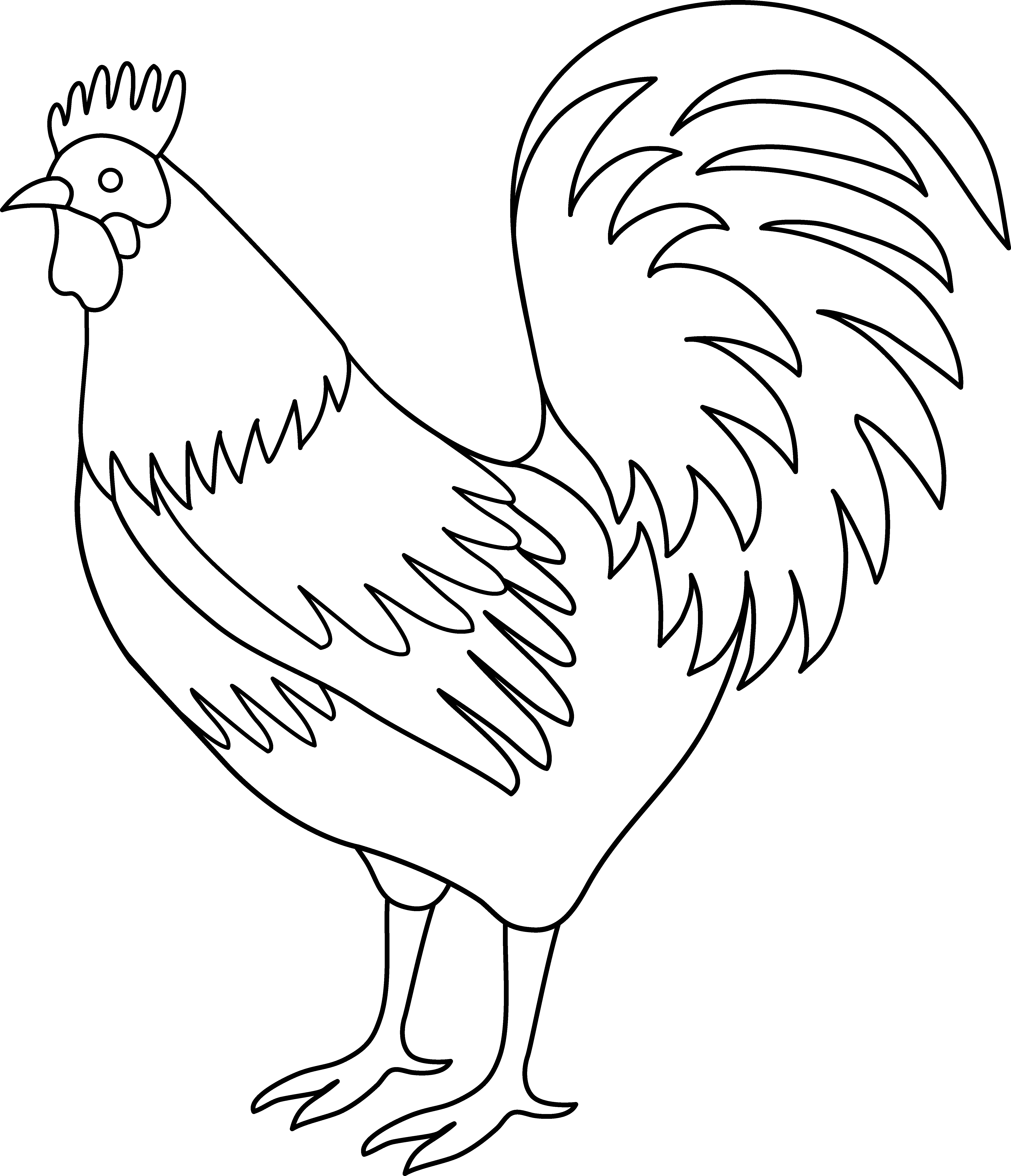 Rooster Coloring Page Free Png 2