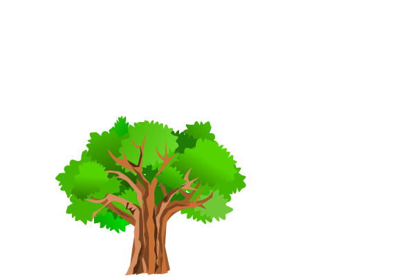 Summer Trees Png Free Images 2
