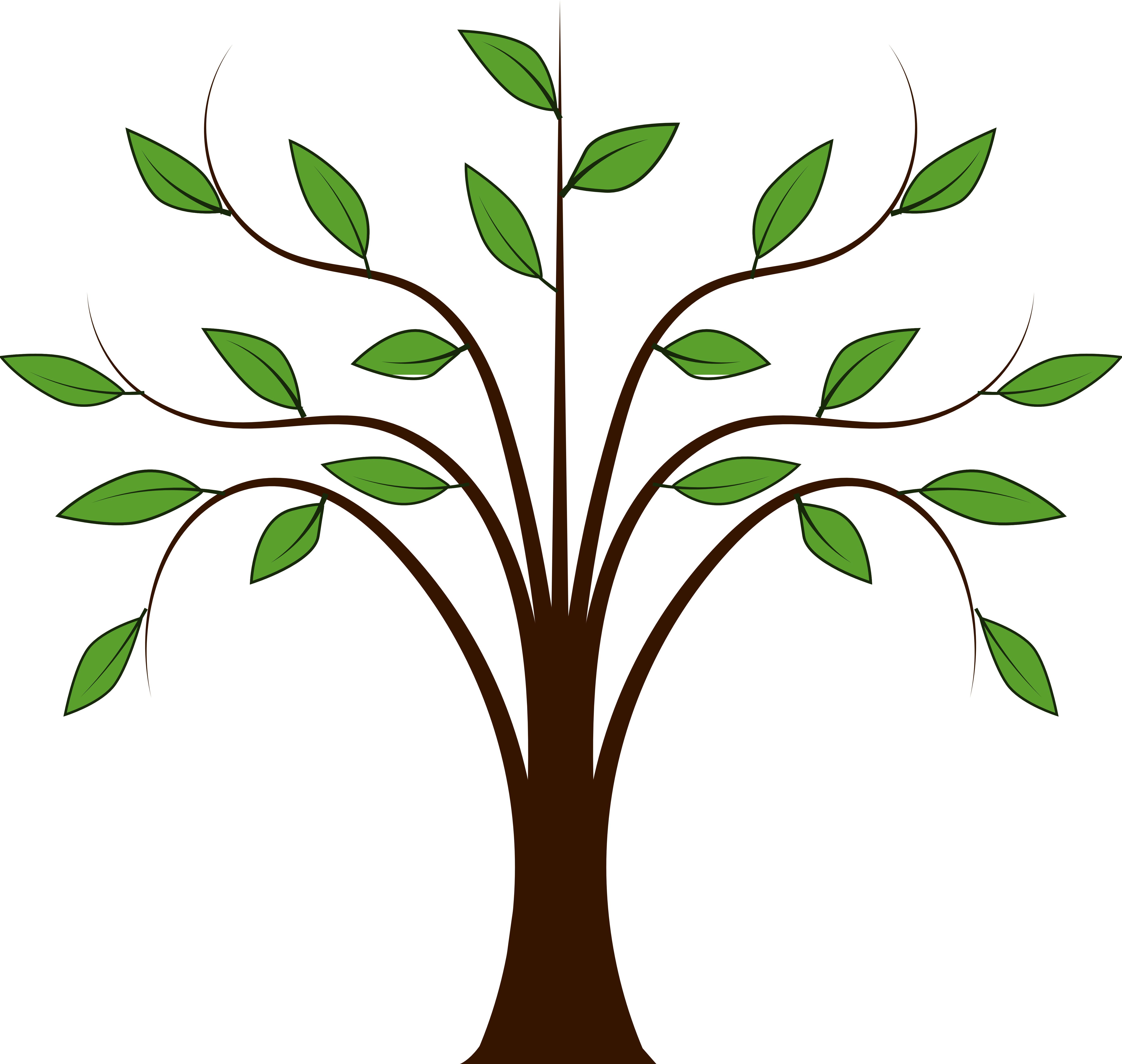 Trees Family Tree Png Free Images 8