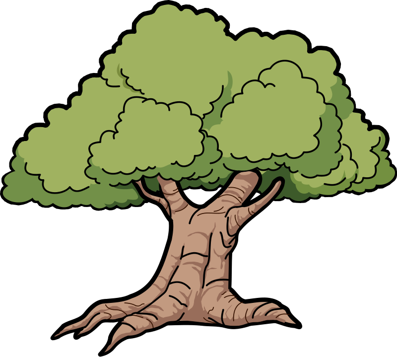 Trees Family Tree Png Free Images