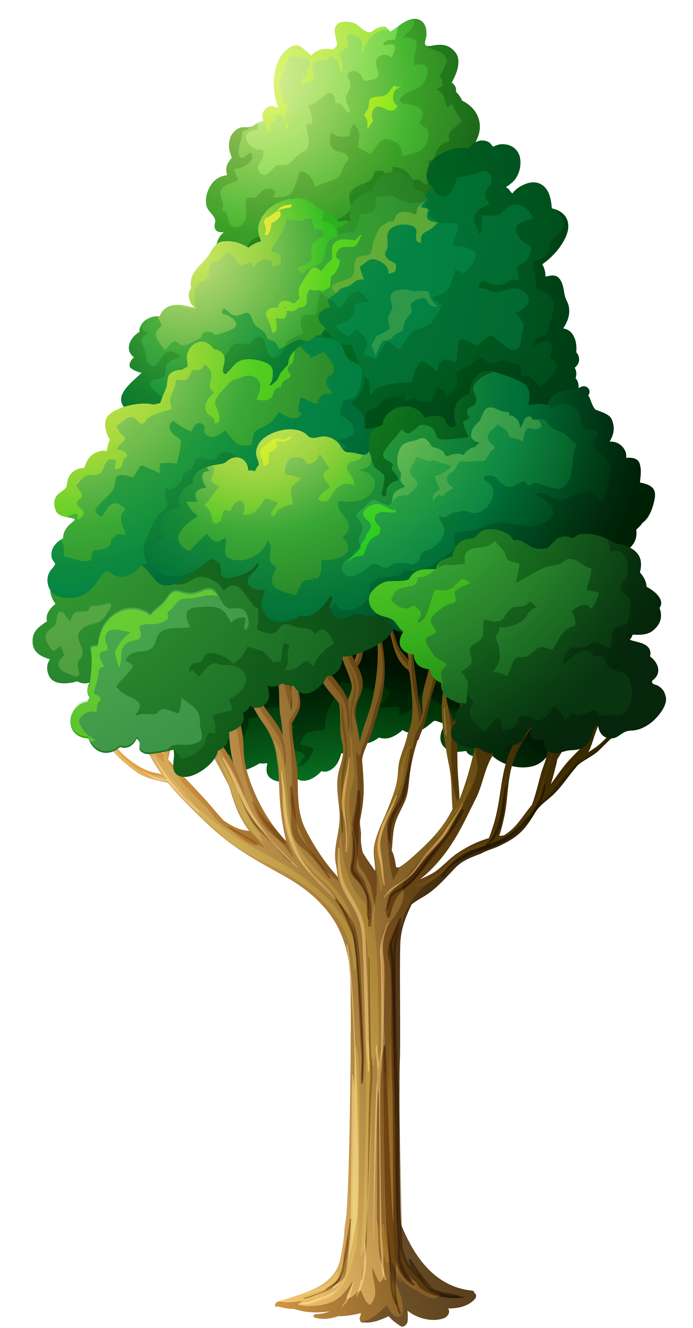 Trees Green Tree Png