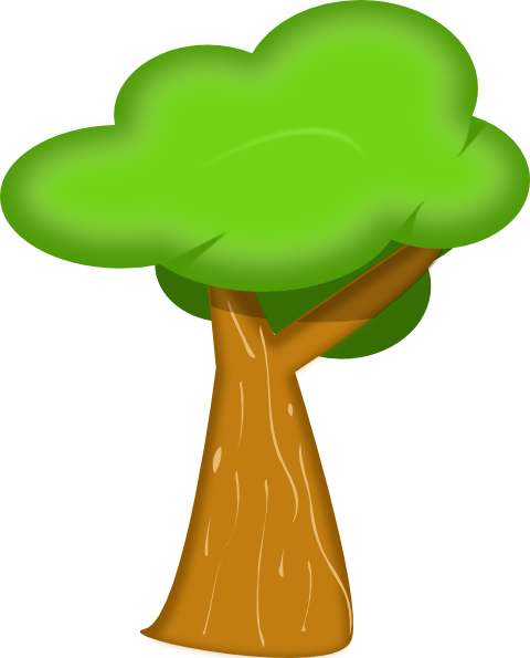 Trees Png Coloring Pages Images Free