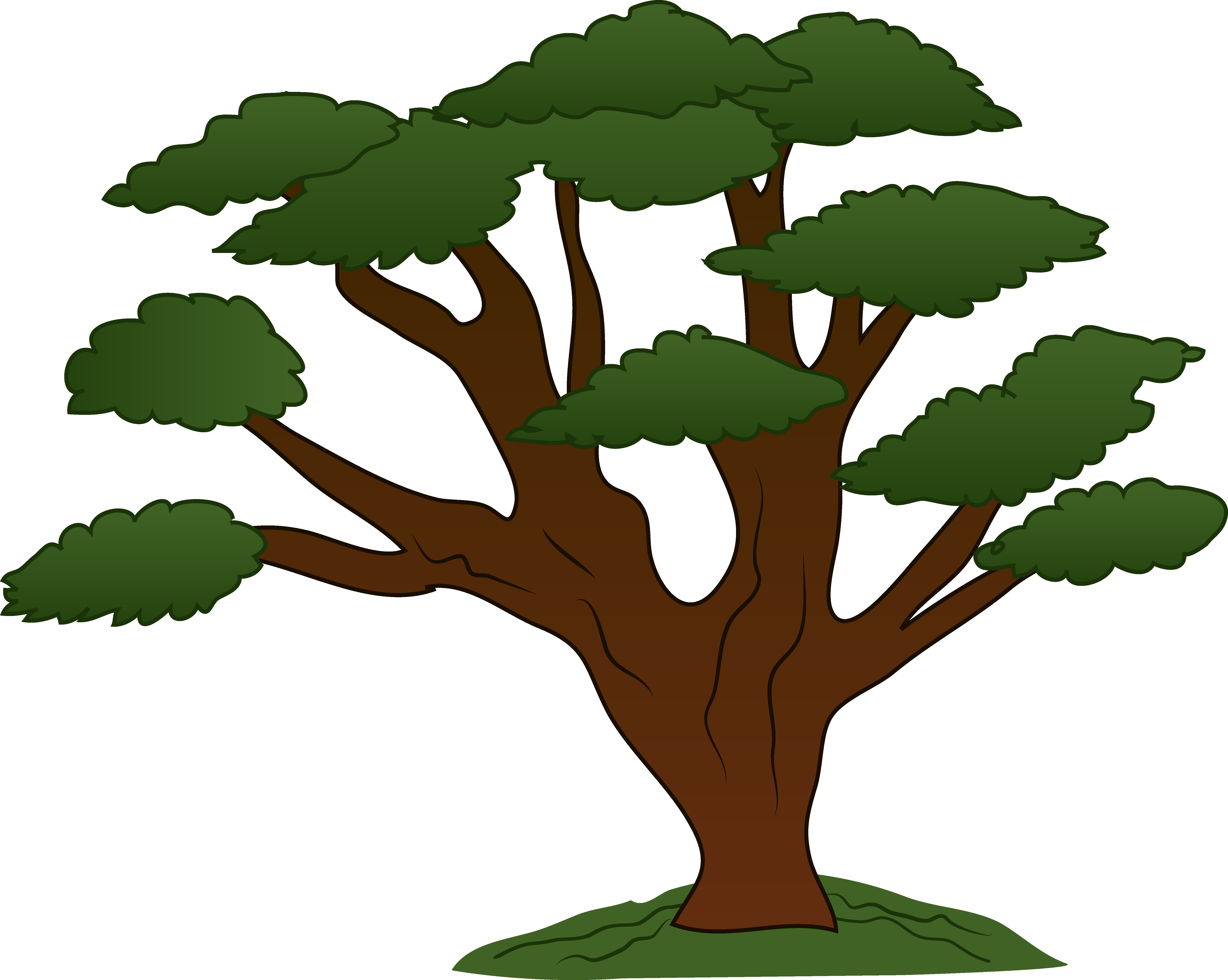 Trees Tree Png Free Images 3