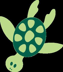 Turtle Png Adiestradorescastro Com Png Image 1