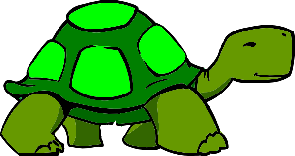 Turtle Png At Vector Png