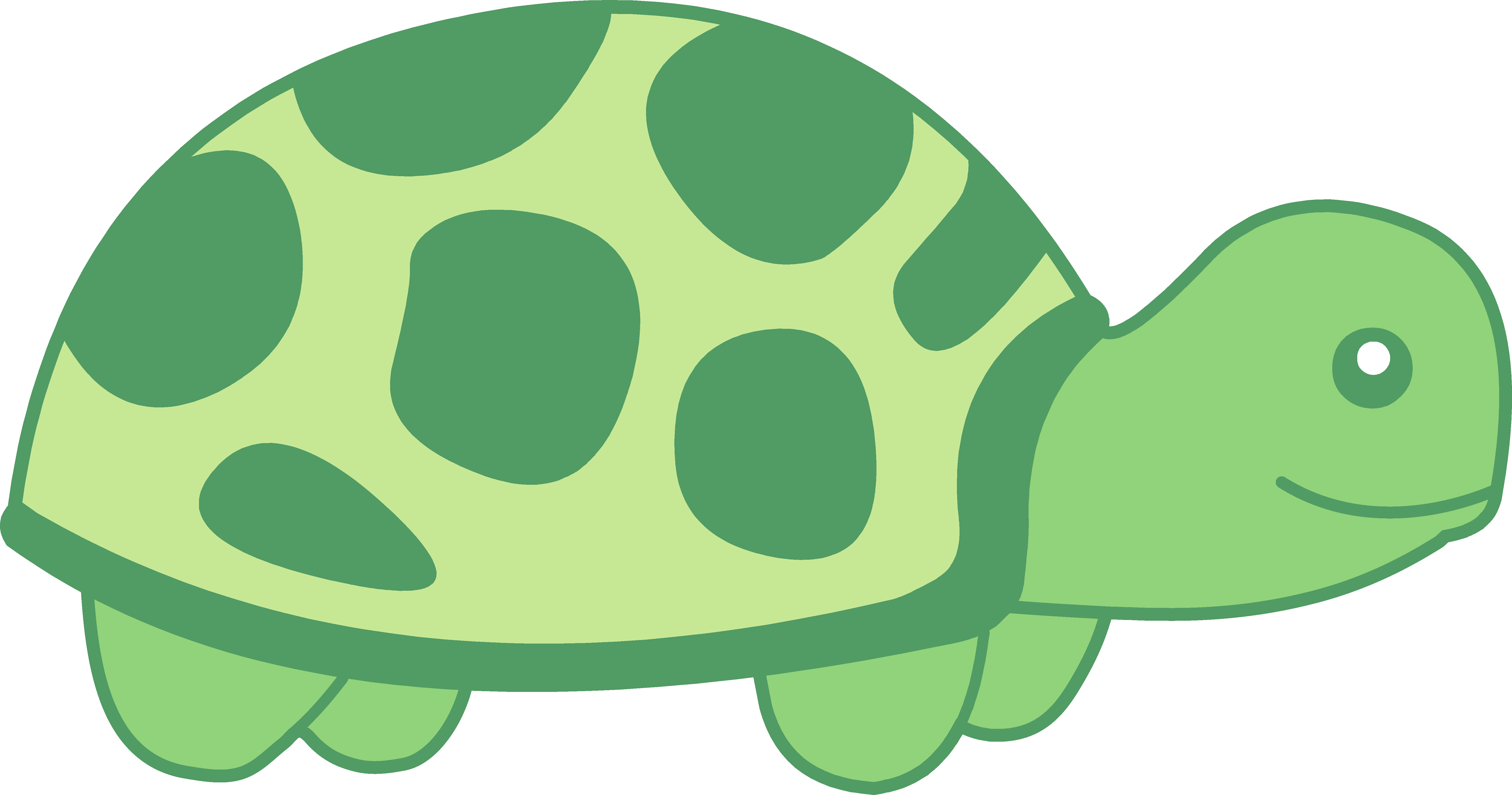 Turtle Png Black And White Free Png Images 2