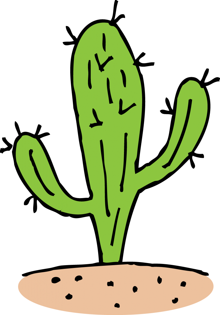 Cactus Png Black And White Chadholtz