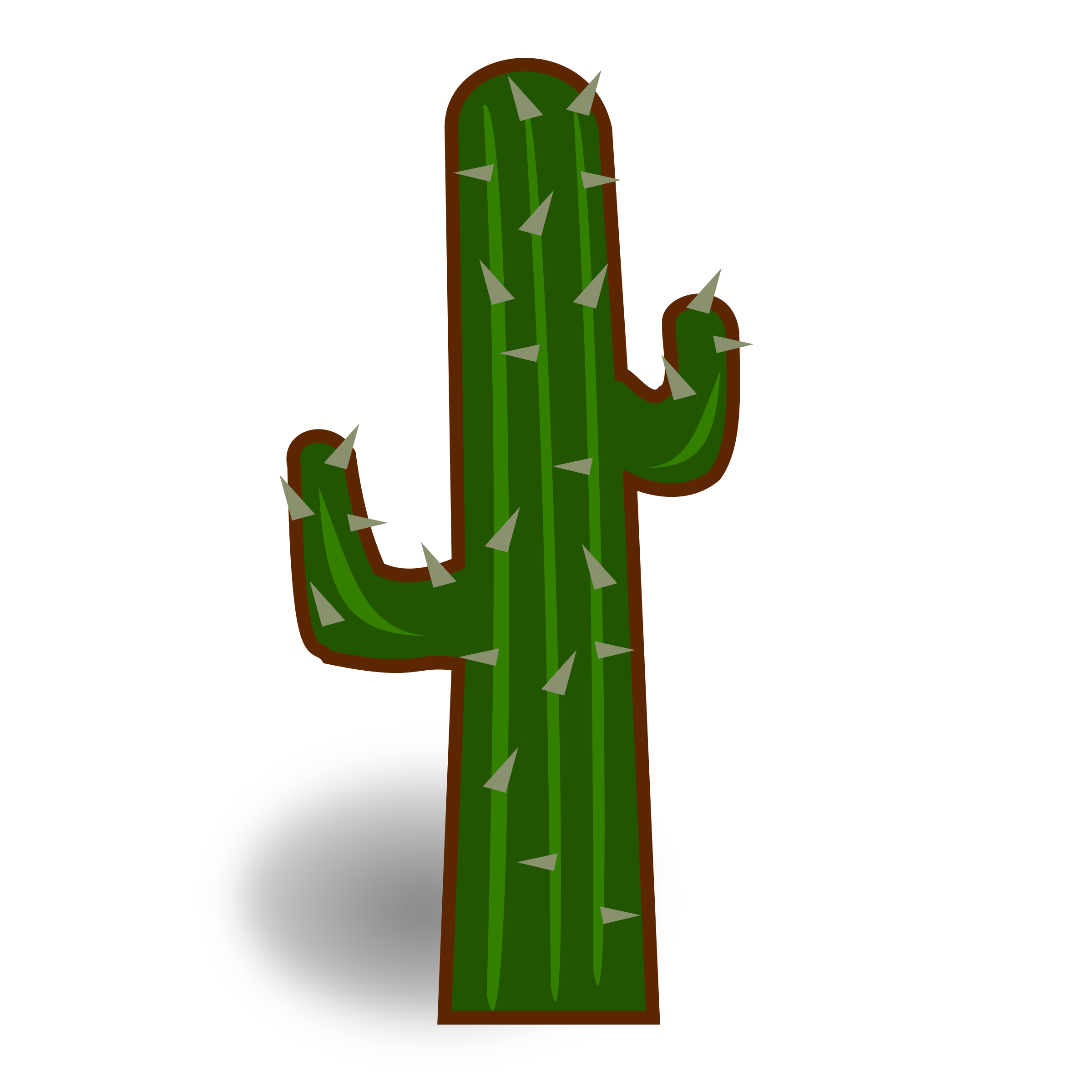 Cactus Png Pictures