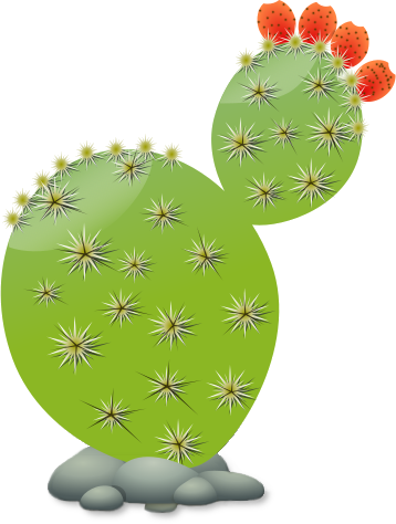 Free Cactus Png Public Domain Plant Png Images And